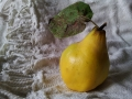 quince-1812039_640