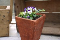 nature-plant-wood-flower-pot-floral-1330698-pxhere.com_
